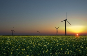 Green Financing: A Mixed Approach